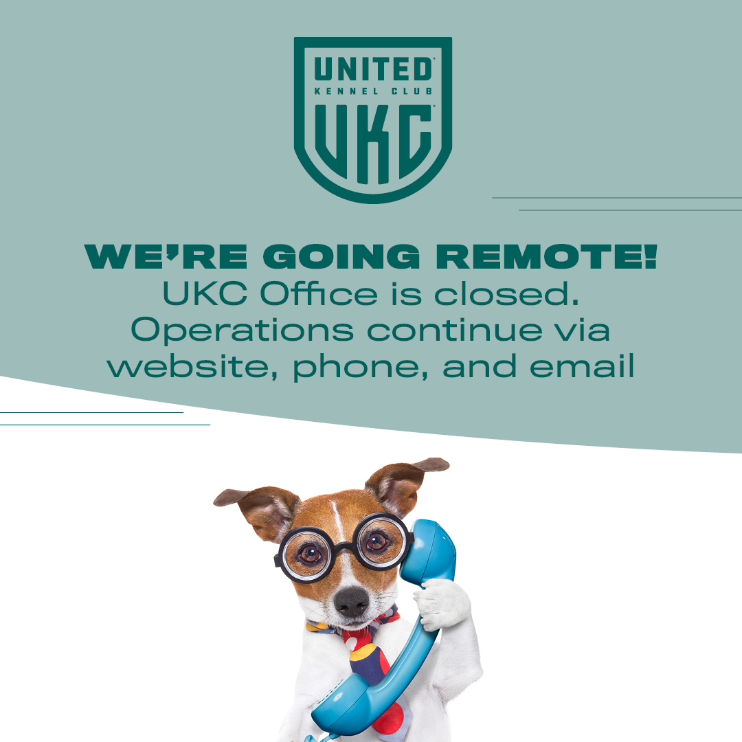 UKC office to work remotely