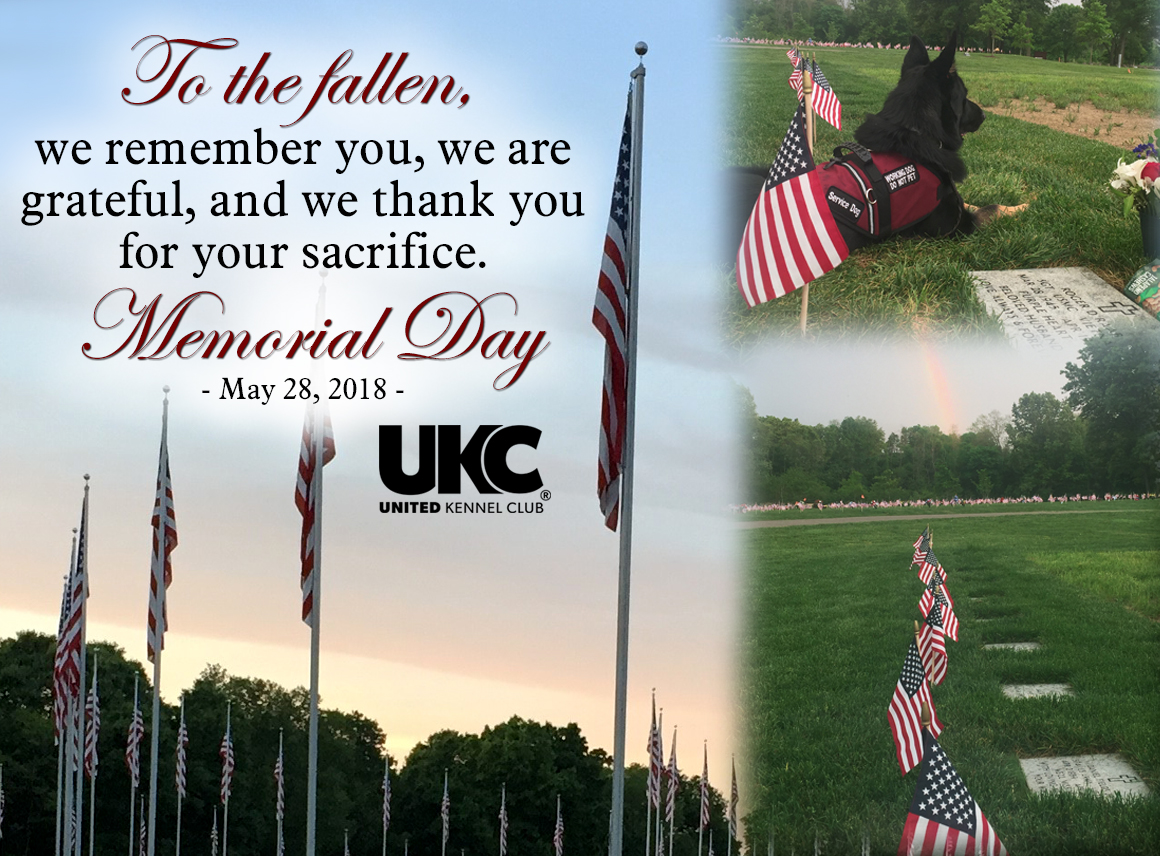 UKC Closed on Memorial Day