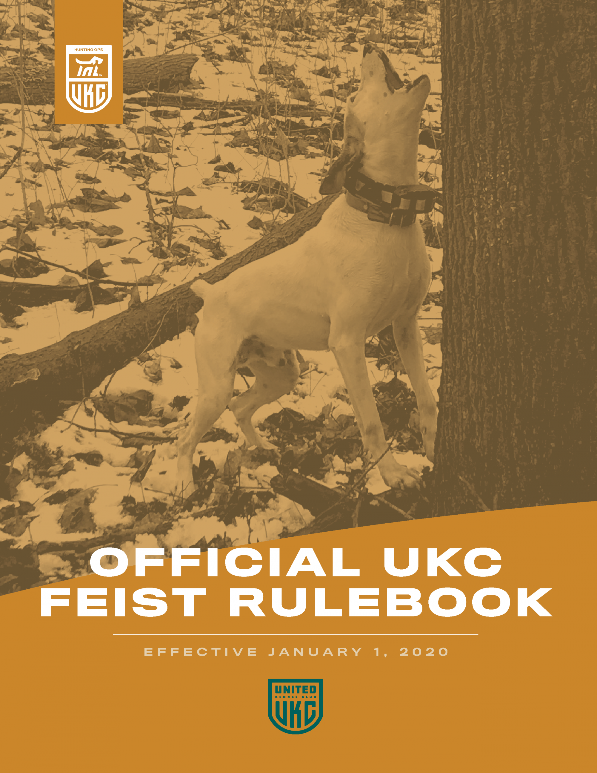 Feist Rulebook Cover