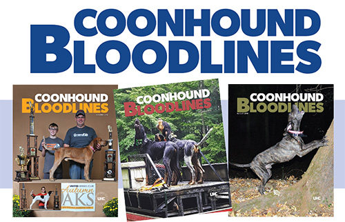 Coonhound Bloodlines Media Kit