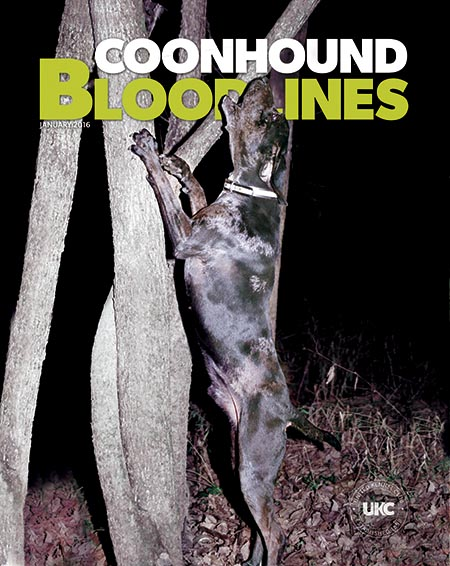 Coonhound Bloodlines Magazine Cover