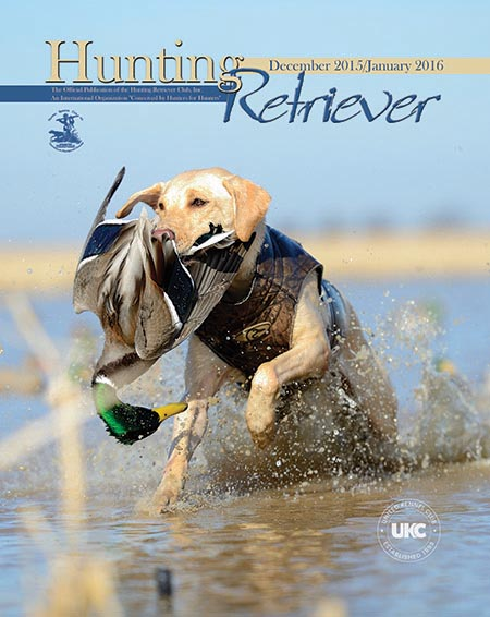 Hunting Retriever Magazine Cover