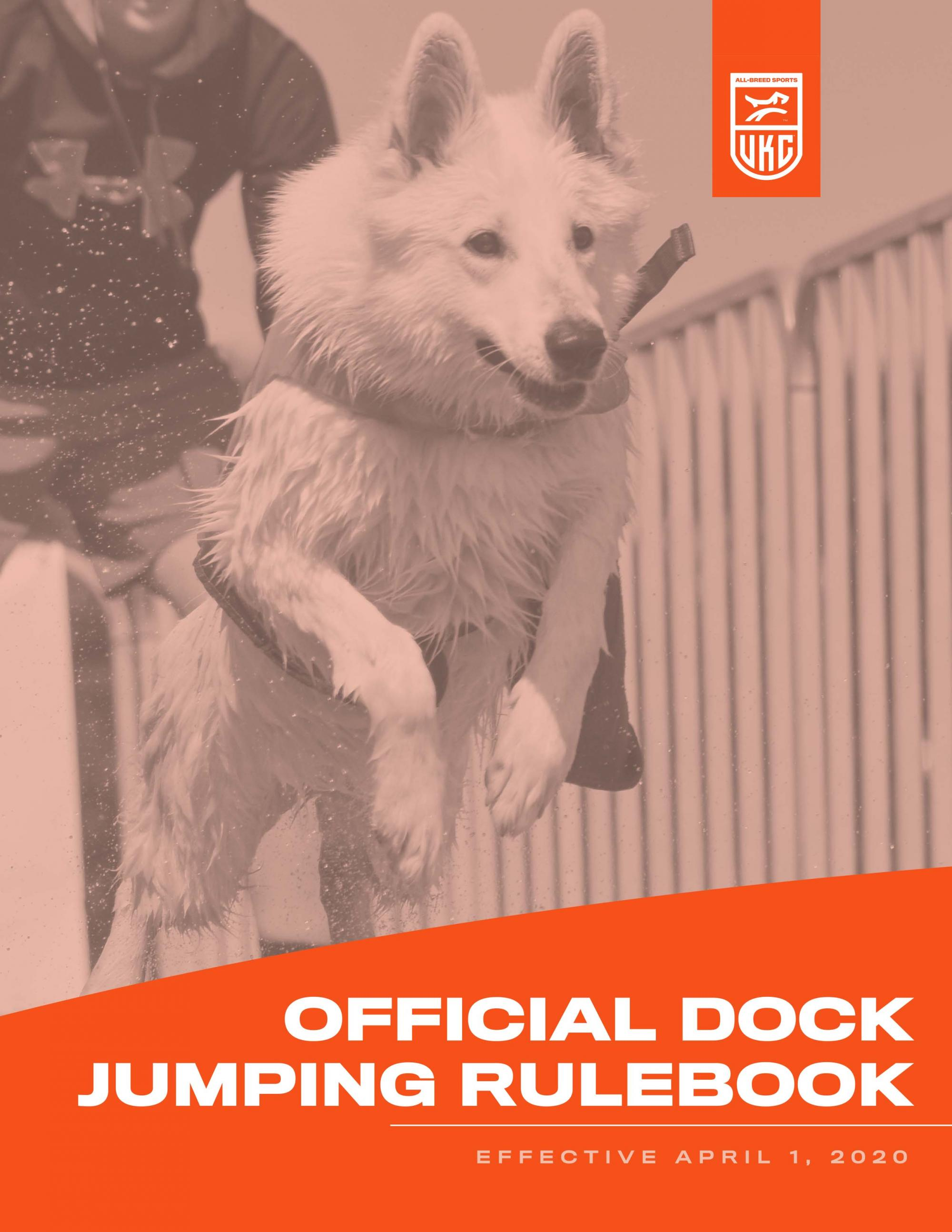 Dock Jumping rulebook cover