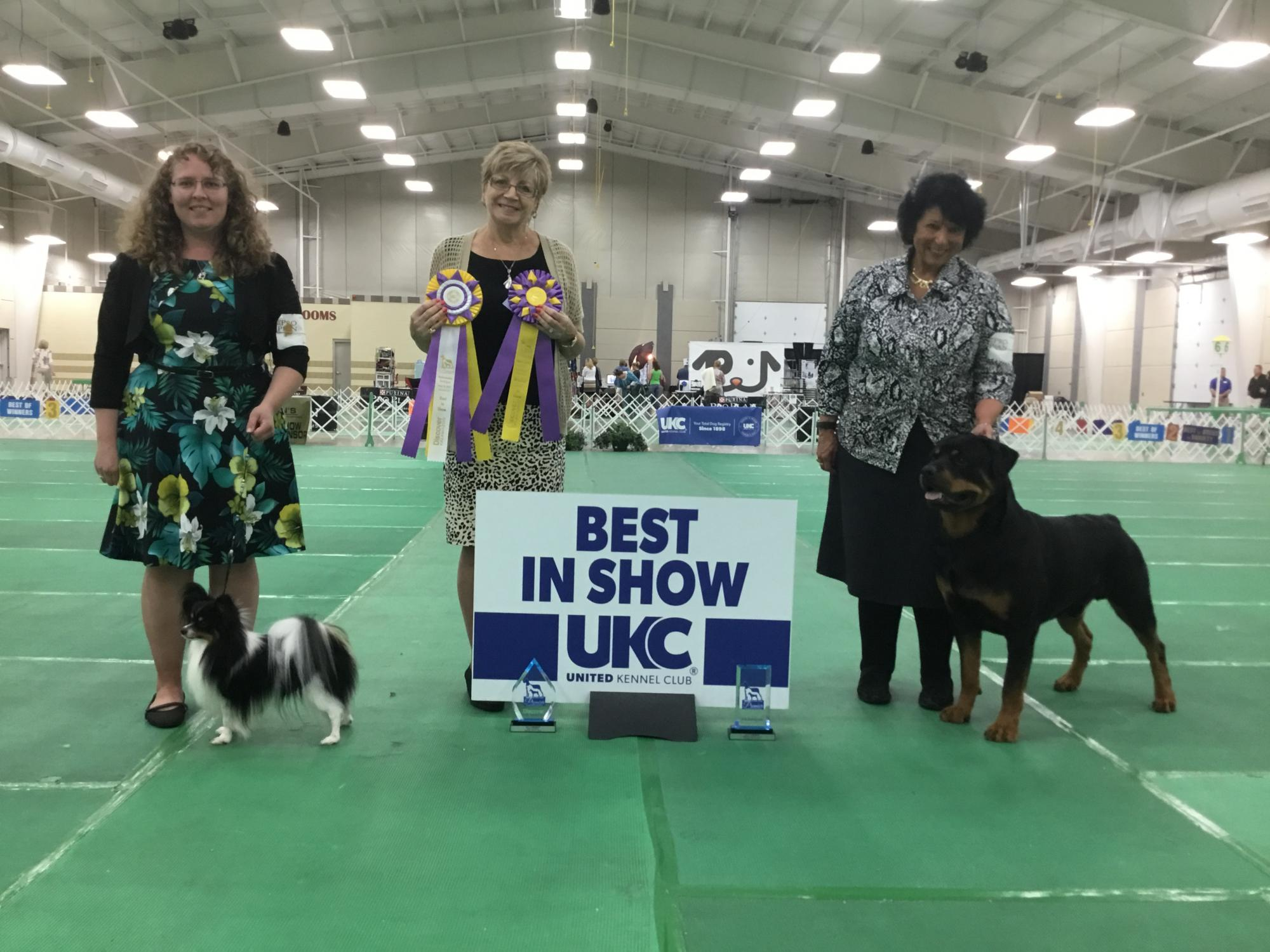 2017 Premier Sunday Best In Show